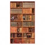 фреска «Библиотека» в магазине «Аркон» Кириши